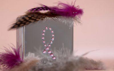 Cancro da Mama: Factores de risco